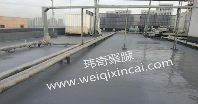 北京亚太中立信息有限公司TIB屋面聚脲防水工程