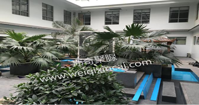 河北省人民医院体验中心景观水池聚脲防水